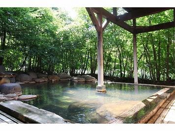 日本秘湯を守る会【公式WEB専用】温泉旅館 銀婚湯 イメージ
