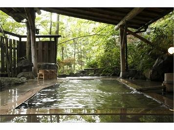 日本秘湯を守る会【公式WEB専用】旅館大沼 イメージ